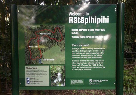 ratapihipihi-scenic-reserve